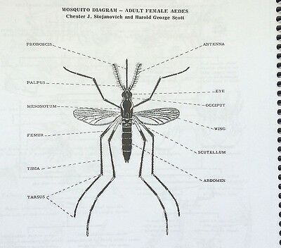 PICTORIAL KEYS to BUGS, FLIES, FLEAS, MOSQUITOES, SNAKES & More INSECTS/PESTS!