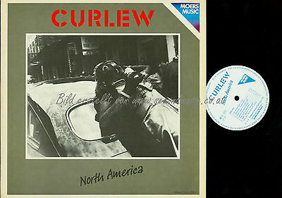 Lp--Curlew North America //