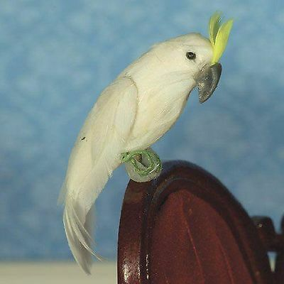 DOLLS HOUSE 1/12th SCALE SULPHUR CRESTED COCKATOO