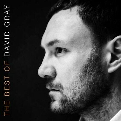 DAVID GRAY The Best Of 2LP Vinyl NEW