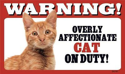 """Warning Overly Affectionate Cat On Duty Plastic Wall Sign 5"""" x 8""""  Orange Gift"""