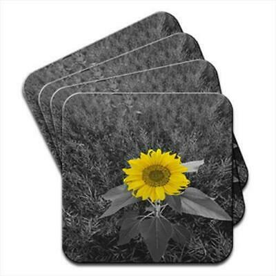 Bright Yellow Sunflower In Grey Fields Set of 4 Coasters