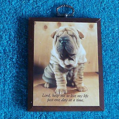 Chinese Shar-Pei Wooden Plaque Dog Wall Art Wood Sign Puppy Picture Inspire