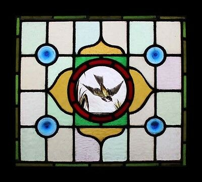 Stunning Painted Swallow In Flight Antique English Stained Glass Window