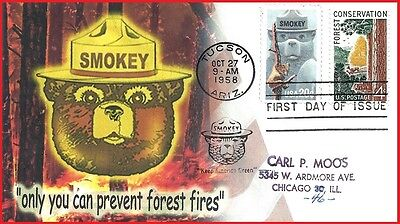 Forest Conservation Only You Can Prevent  Wild Forest Fires Smokey The Bear FDC