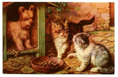 vintage cat postcard cats fight over food in bowl dog in kennel watches