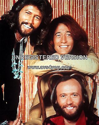 """Bee Gees 10"""" x 8"""" Photograph no 4"""