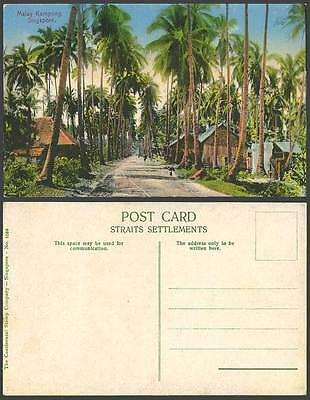 Singapore Old Colour Postcard Malay Kampong Village Street Scene, Houses & Palms