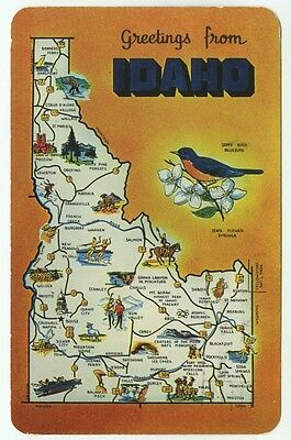 Greetings From Idaho Illustrated State Map Postcard