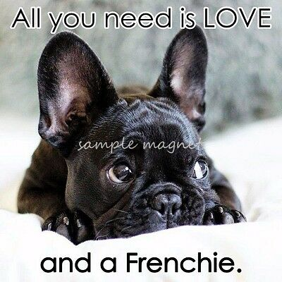 "FRENCH BULLDOG All You Need is Love Refrigerator Magnet 3"" x 3"""