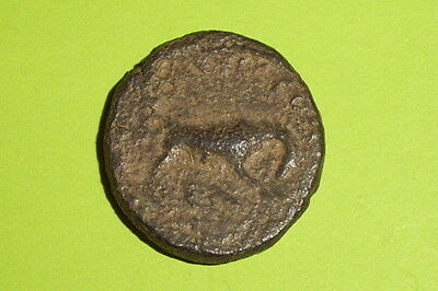 ANCIENT ROMAN BIBLICAL COIN she-wolf ELAGABALUS Aelia Capitolina JERUSALEM bible