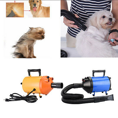 High Power Lowest Noise Pet Hair Dryer Hairdryer Blower Dog Cat Grooming Heater