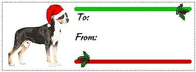 Greater Swiss Mountain Dog Christmas gift tags WATERPROOF 120 pieces Swissie
