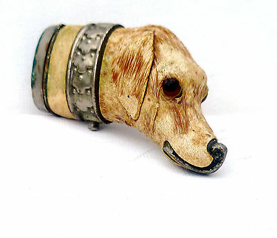 Absolutely Rare Beautiful Georgian Novelty Velvet Hunting Dog Head Vesta Case