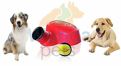 New Nerf Stomper Dog Toy Tennis Ball Outdoor Launcher Thrower Up To 75 Ft 015608