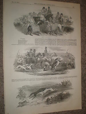 Hare coursing on Epsom Downs 1848 old prints and article