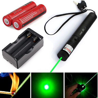 Military Green Laser Pointer Pen 5mw Burning Lazer 18650 Battery Charger USA