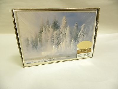 """18"" UNUSED Sealed Vtg Box Hallmark Holiday Xmas Christmas Card & Envelopes (A10"
