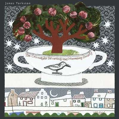2xLP James Yorkston The Cellardyke Recording And Wassailing NEW OVP Domino R