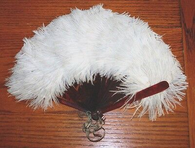 Vintage 1920s RARE IVORY Fan  Ostrich Feather & tortoiseshell  handle