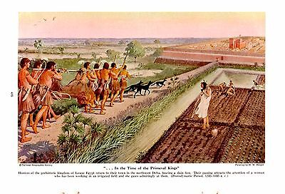 1941 Egyptian Lower Kingdom Hunters Carry Slain Lion H M Herget Art Print RARE