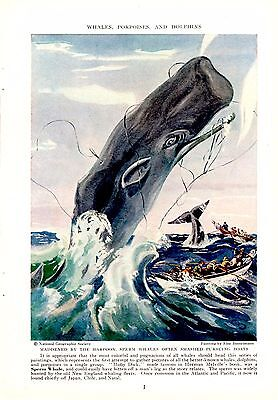 1940 Harpooned Sperm Whale Smashes Pursuing Boats - Else Bostelmann Print