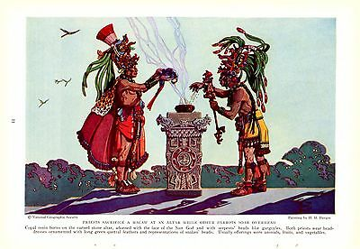 1935 Mayan Priest Sacrifice a Macaw to the Sun God H M Herget Vintage Art Print