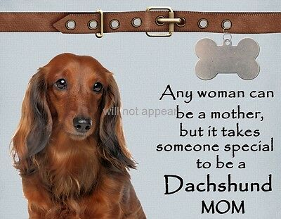 DACHSHUND LONG HAIRED Takes Someone Special Dog Fridge Magnet