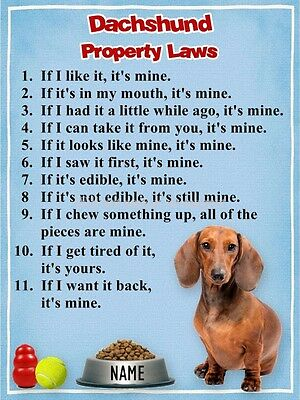 DACHSHUND Property Laws Magnet Personalized with Dog's Name