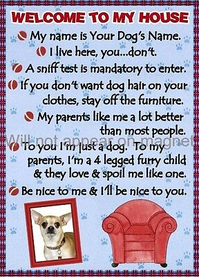 CHIHUAHUA Dog Magnet Welcome to My House