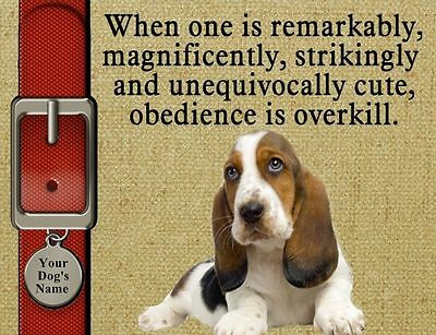 BASSET HOUND Dog Magnet Obedience Is Overkill PERSONALIZED