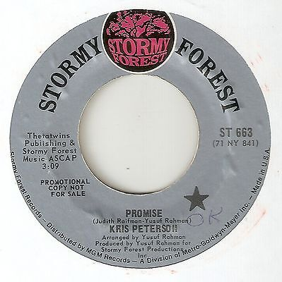 KRIS PETERSON Promise STORMY FOREST PROMO DETROIT  NORTHERN SOUL FUNK  45