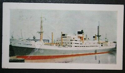 SS City of Manchester     Ellerman Lines         Illustrated Colour Card