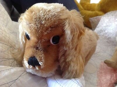 Vintage Steiff dog with tag&abutting jointed head cocker spaniel mohair