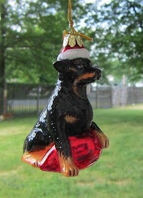 Glass Ornament ROTTWEILER w/Holiday Bulb Xmas Ornament