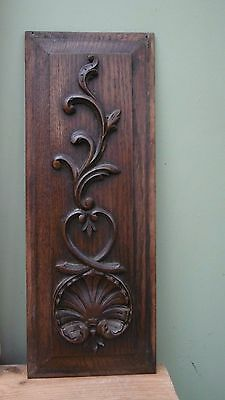 SUPERB 19thc OAK CARVED PANEL WITH SCALLOP SHELL & ACANTHUS LEAF DECOR