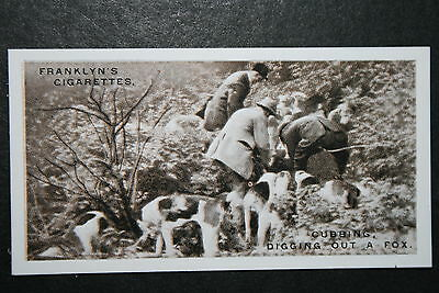 Miss Guest's Foxhounds  Dorset  Vintage  Photo Card  VGC / EXC