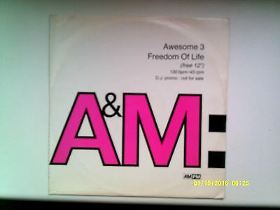 """Awesome 3 Freedom Of Life 12"""" Promo Single 1991 N/mint"""