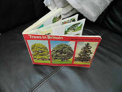 Trees Of Britain Brooke Bond Picture Cards Old Complete Booklet Set