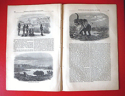 1857 antique AFRICA pictorial Andersson Lake Ngami many pix + text