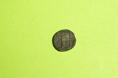 Ancient GREEK COIN fir tree SCEPSIS TROAS 400 BC-310 BC forepart Pegasus rare ae