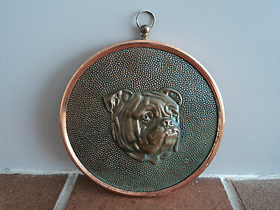 Vintage Copper British Bull Dog Wall/door Plaque - Gorgeous Detailed Item.