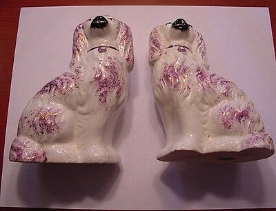 Pair 20th Cent Staffordshire Ware Spaniel Dogs VW Mark Unusual Purple Color 5.5""