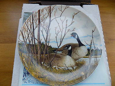 Mib 'wings Upon The Wind' Series Plate 2 Of 6 'nesting' By Donald Pentz 1986