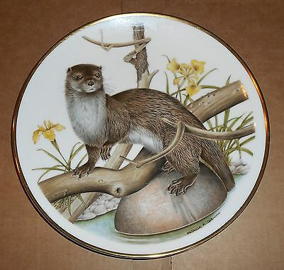 Wedgwood Bone China Otter Design Plate