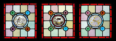 Stunning Rare Victorian Painted Birds Set Of 3 English Stained Glass Windows