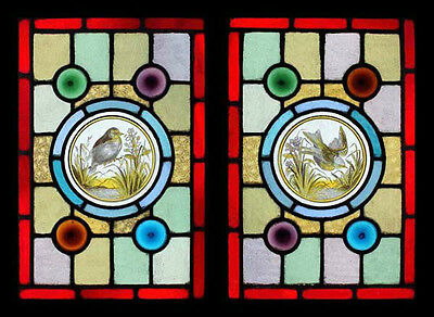 Stunning Rare Victorian Painted Birds Pair Antique English Stained Glass Windows