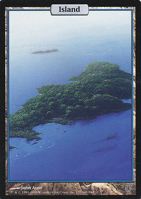 1 x Full Art Island from Unhinged (magic the gathering)