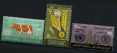 Gaza, Palestine 1963 SG#125-7 Freedom From Hunger MNH Set #D39503