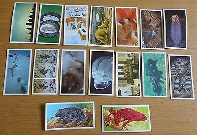 Brooke Bond Tea Picture Cards Unexplained Mysteries & Incredible Creatures